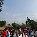 DSC01240-600.jpg