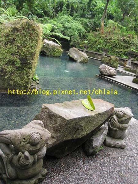 飯店裡女神瀑布水的神泉泳池.jpg