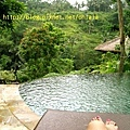 池~royalpitamaha.jpg