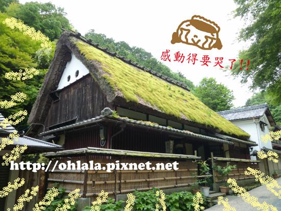 嵐山17.jpg