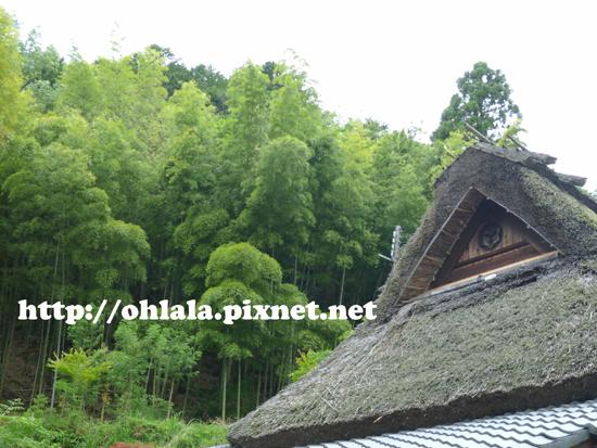 嵐山18.jpg