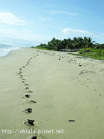 加勒比海10.jpg