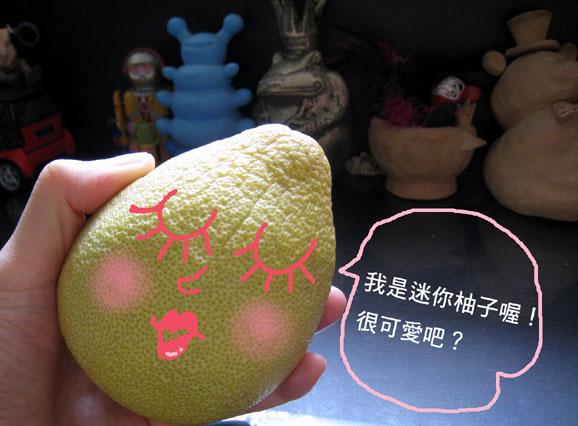 迷你柚子2.jpg