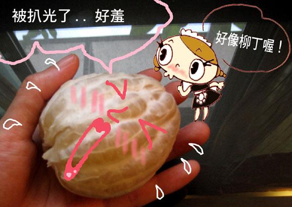 迷你柚子3.jpg