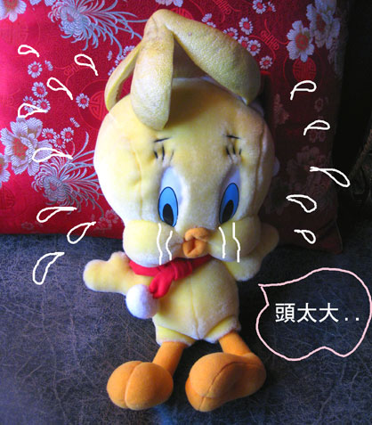 迷你柚子5.jpg
