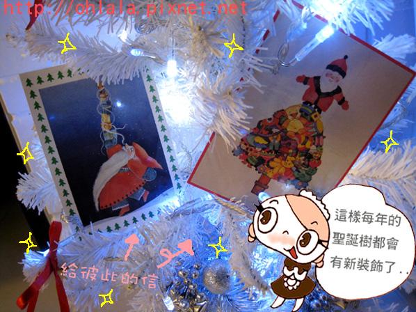 聖誕節最美的裝飾5.jpg