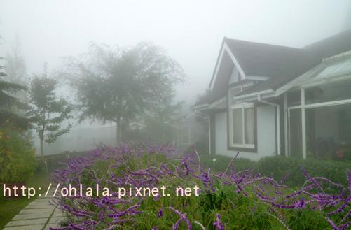 霧裡喝咖啡7.jpg