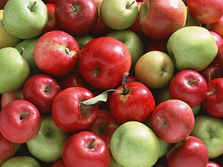 fruit_apple_apple-tree_wallpaper_AP17167