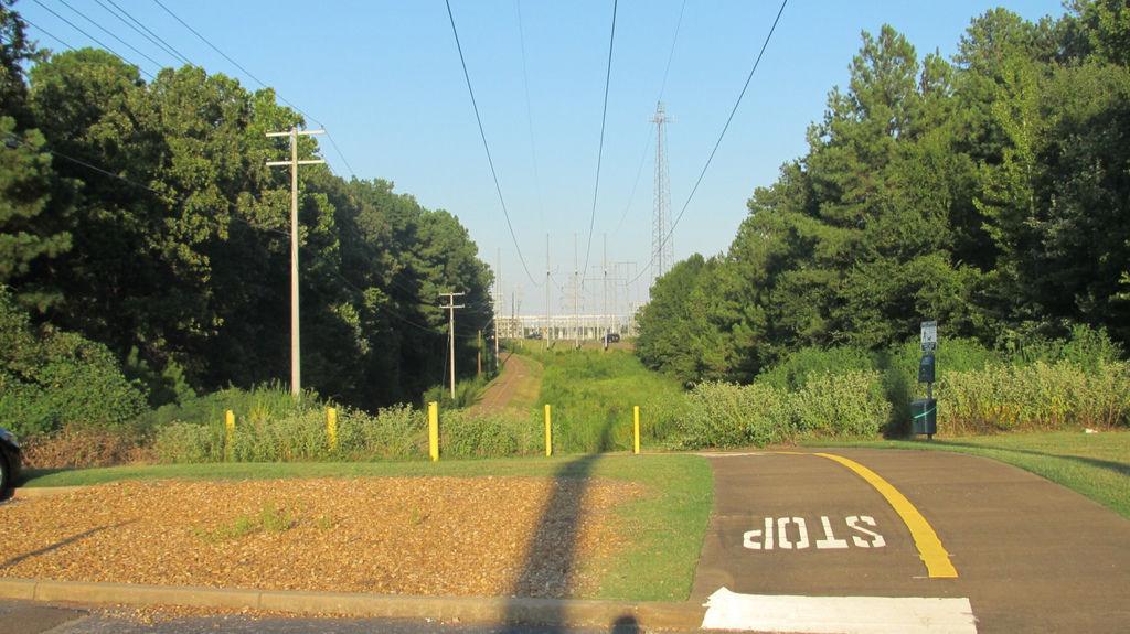 密西西比大學11