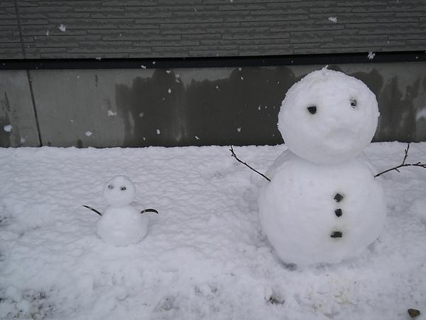 入春的第一場春雪.jpg