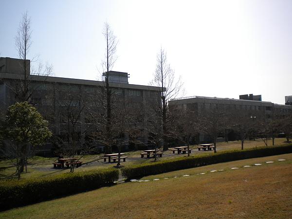 校園一角2.jpg