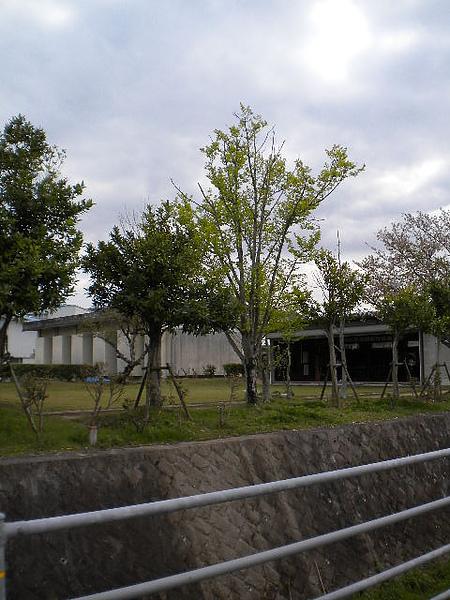 弓道社.jpg