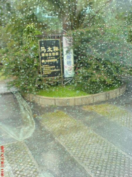 第二天-馬太鞍濕地