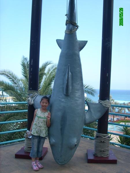 前一秒才抓到大白鯊...
