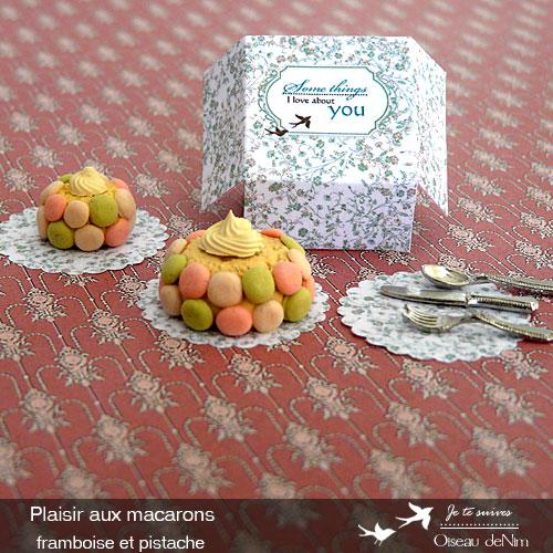 Plaisir-aux-macarons-framboise-et-pistache-1.jpg