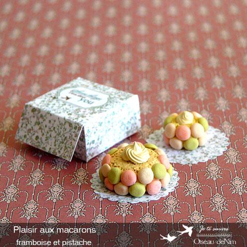 Plaisir-aux-macarons-framboise-et-pistache-2.jpg