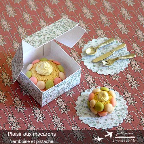 Plaisir-aux-macarons-framboise-et-pistache-3.jpg