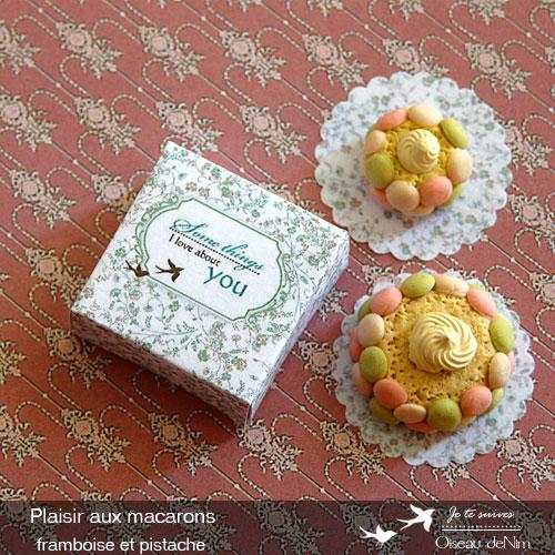 Plaisir-aux-macarons-framboise-et-pistache-4.jpg