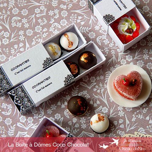 Dome-coco-chocolat-5.jpg
