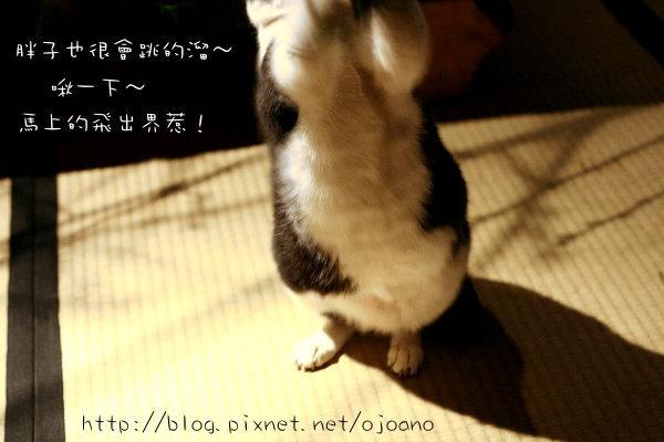 IMG_9344.jpg