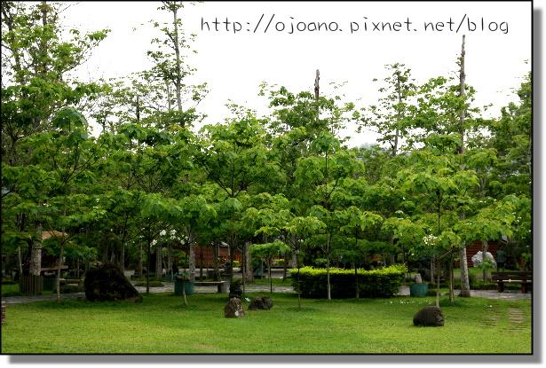 IMG_6973.JPG