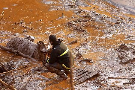 巴西礦災污泥入海 動植物「無一倖免」