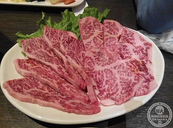 琉球的牛 (6).jpg