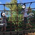 Christine Lin 奧武山公園01.jpg