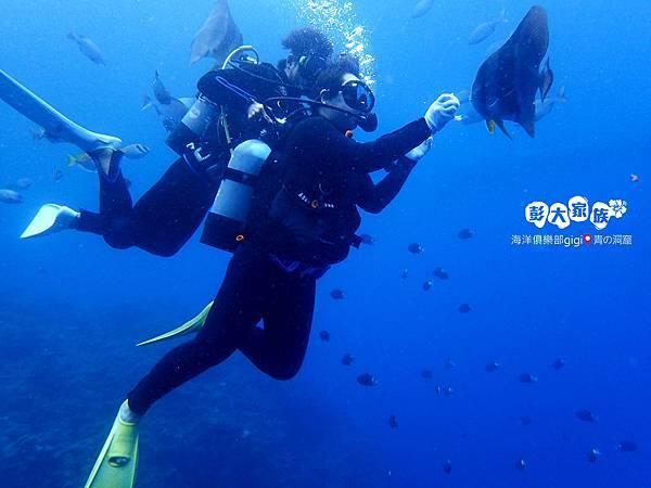 P004_被熱帶魚包圍05.jpg