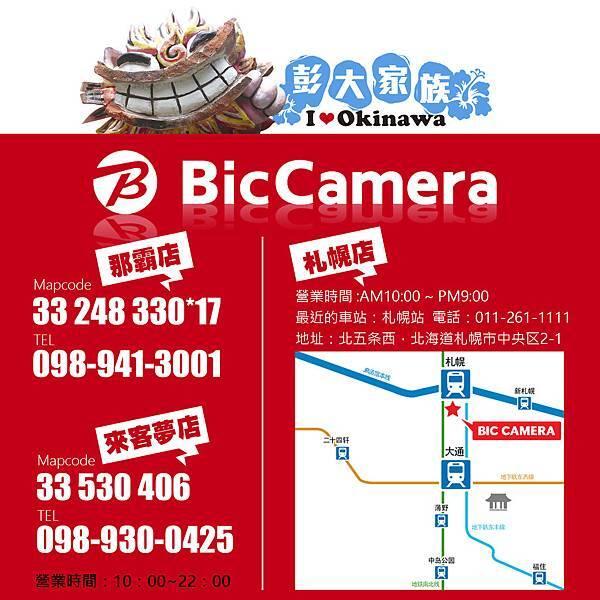 BIC +DATA NEW.jpg