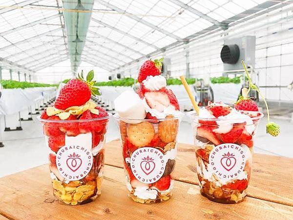 40分鐘的草莓吃到飽.jpg