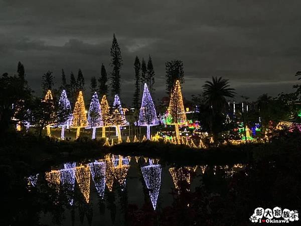 東南植物園 冬天燈光秀