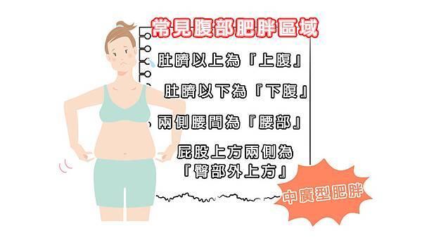 常見腹部肥胖區域.jpg