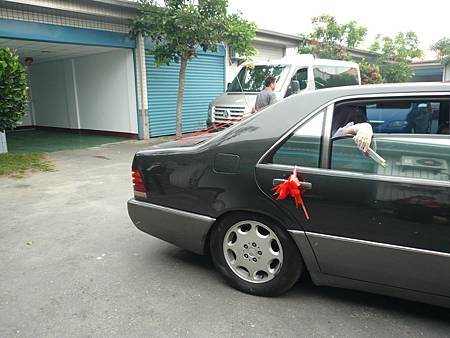 P1170878.JPG