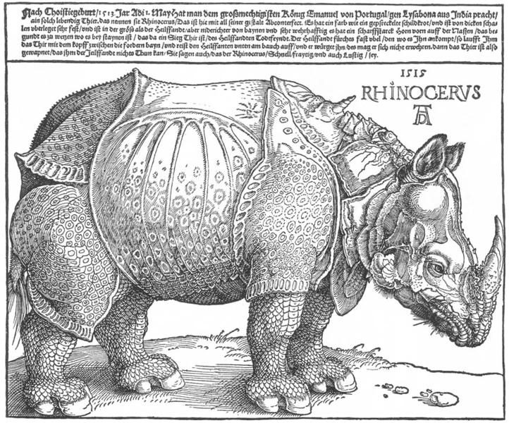 722px-Durer_rhino_full