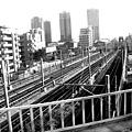 東京メトロ日比谷線、つくばエクスプレス、JR常磐線