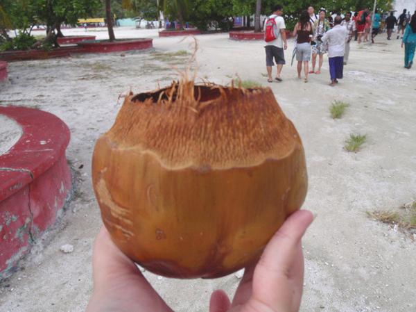 10/27 滿地的椰子殼