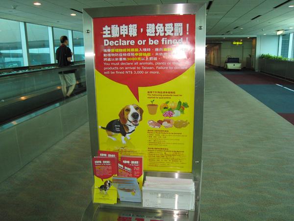 10/30 回到台灣了
