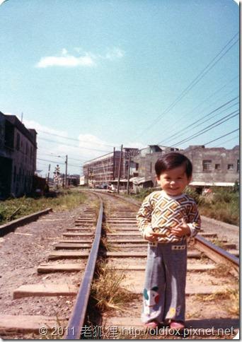 1977年的我