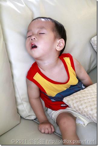 睡著的小雍