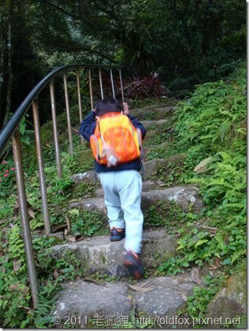 小罡爬階梯