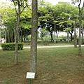 25 (都會公園)
