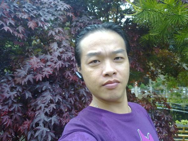 20090416158.jpg