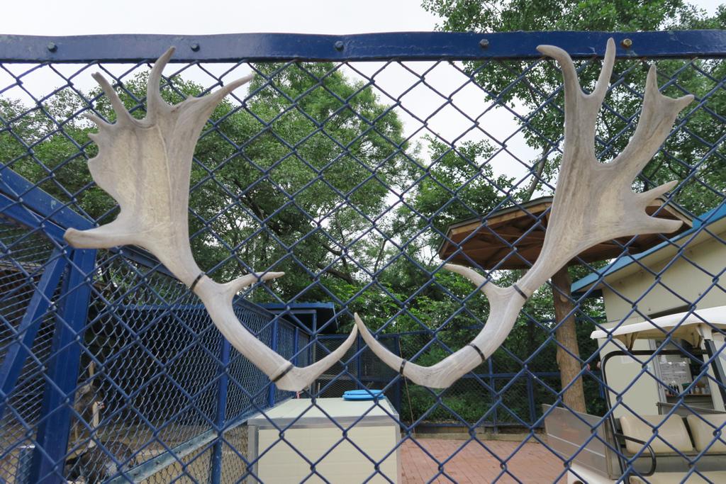 달성공원達城公園