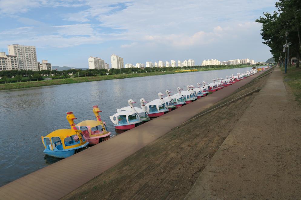 琴湖江自然公園