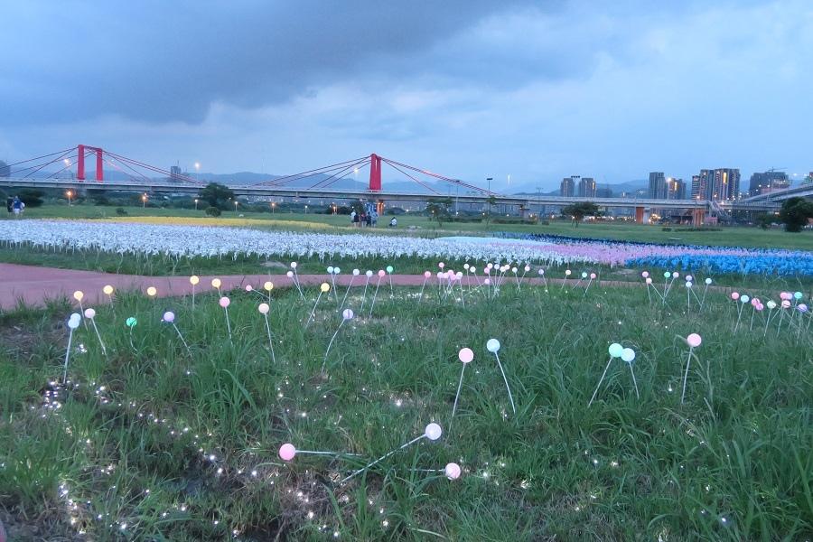 板橋蝴蝶公園風車花園