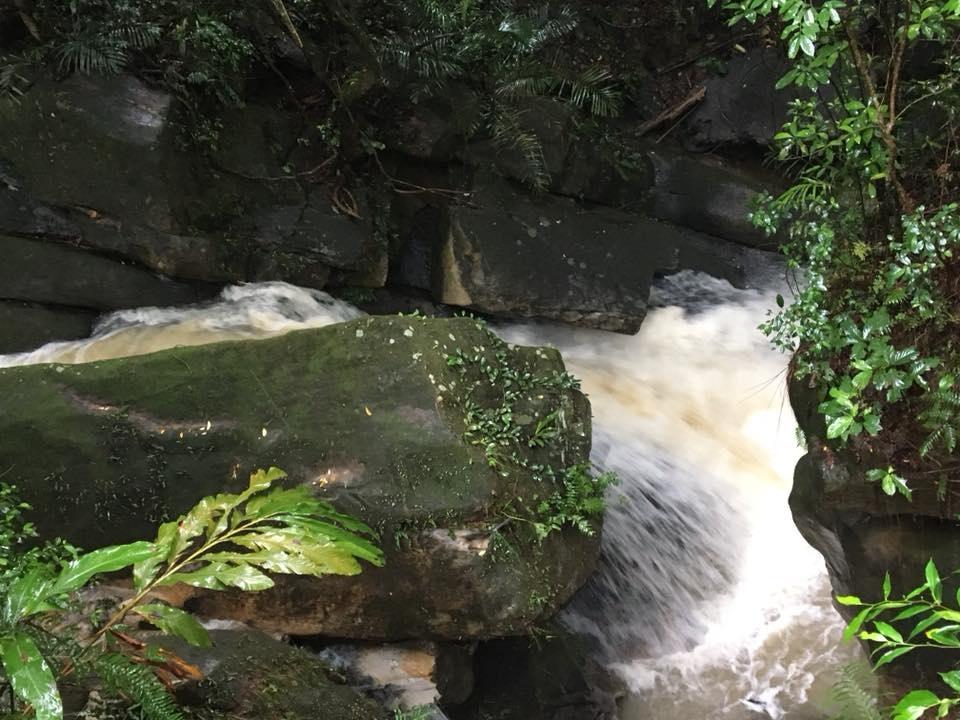 大溝溪親水步道