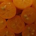 橘之鄉-2