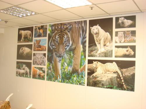 tiger printing-1.jpg