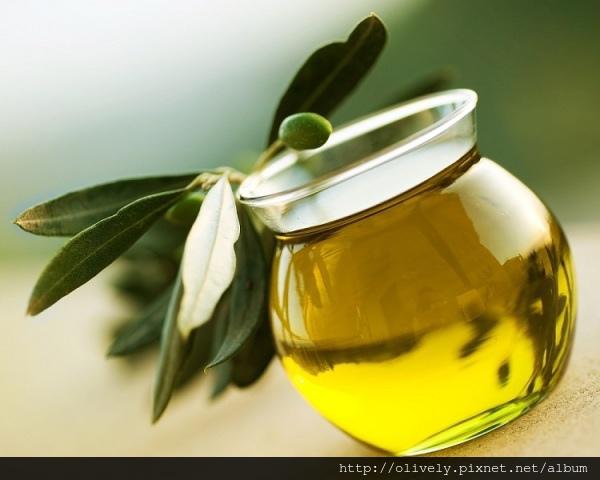 olive-oil-hair-treatment